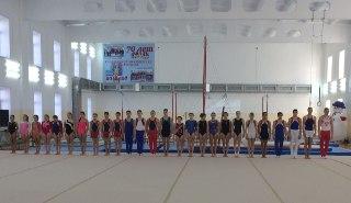 В Костроме пройдет чемпионат по спортивной гимнастике