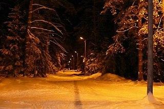 В Макарьевском парке отдыха оборудуют лыжную трассу с освещением